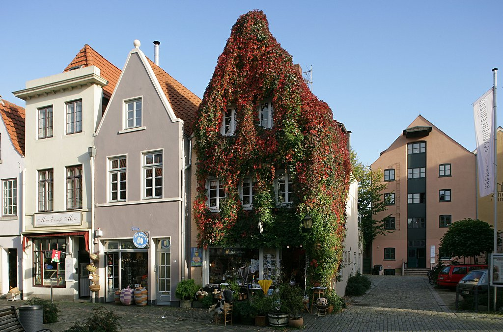 BaerenhausEfeu-YS6T0193.jpg